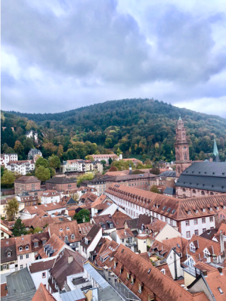 Heidelberg pic 1.png