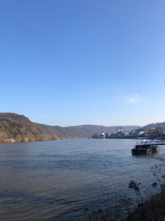 Boppard in the sun pic.png