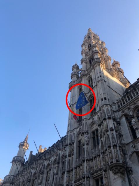 Brussels EU flag pic.png